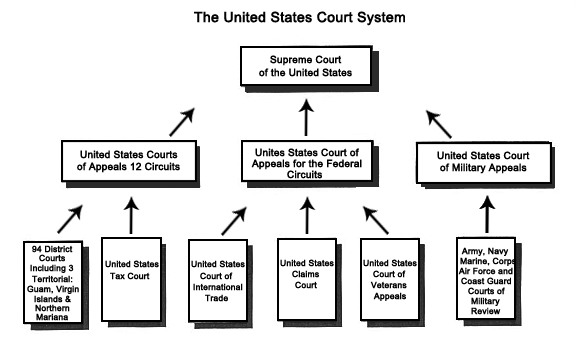 http://www.iitcr.com/wp-content/uploads/2011/10/us-court-system.png